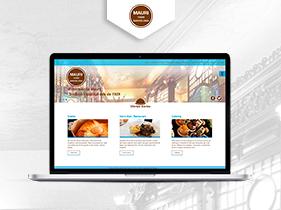 Desarrollo  WordPress Mauri